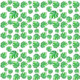 Acuarela pintada tropical monstera hojas patrón