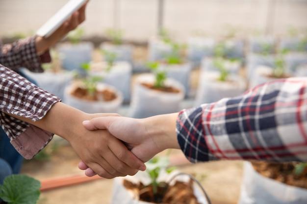 Acuerdo de negocios dándose la mano en una plantación de melones.