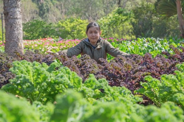 Adolescente en el jardín hidropónico durante el fondo de comida de tiempo de mañana