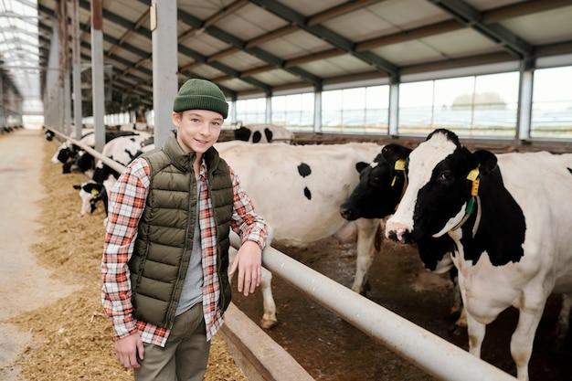 Adolescente sonriente en ropa casual mirándote mientras está de pie junto a un gran prado con un rebaño de vacas lecheras y cuidando el ganado