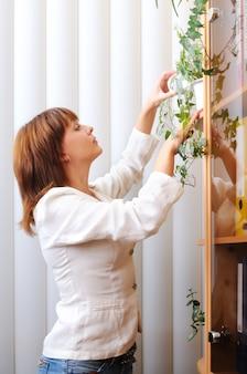 Adorable mujer morena de pie cuidando una planta de interior cerca del gabinete con documentos