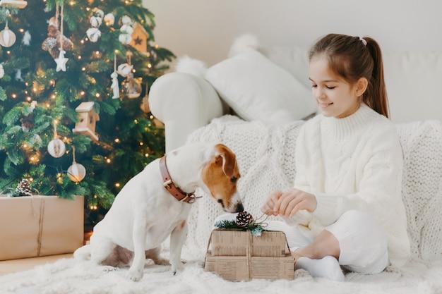 Adorable niña pequeña con cola de caballo, vestida con un suéter blanco de invierno, se sienta con las piernas cruzadas en el piso, desempaca el regalo de navidad
