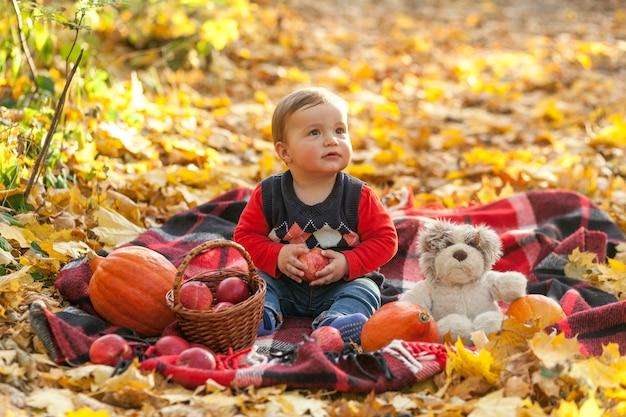 Adorable niño con manzanas y osito de peluche