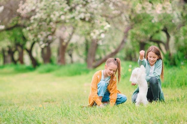 Adorables niñas en el jardín floreciente del manzano en primavera