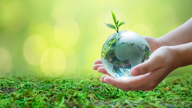 Los adultos están enviando el mundo a los bebés. concepto día tierra salva el mundo salva el medio ambiente