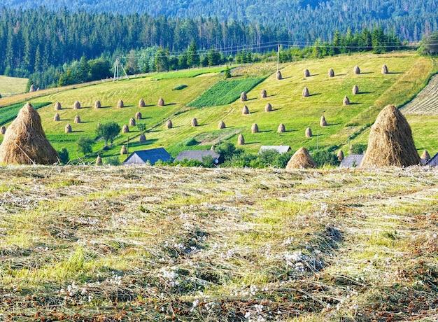 En las afueras de la aldea de montaña de verano con montones de heno en el campo (cárpatos, ucrania)