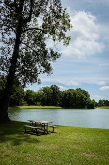 Agradable paisaje del parque con rayos de sol brillando en el lago