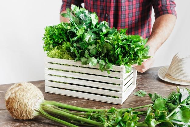 Agricultor recién hierbas caja de madera mesa de madera cosecha