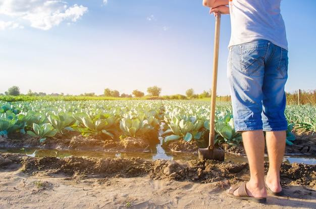 El agricultor está regando el campo. irrigación.