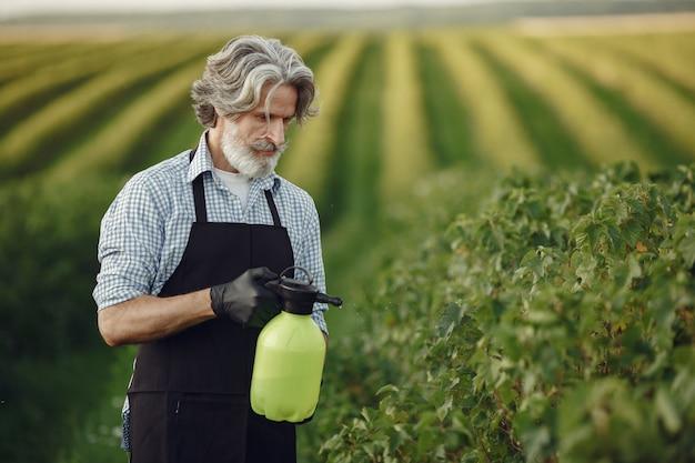 Agricultor rociar verduras en el jardín con herbicidas. hombre con delantal negro.