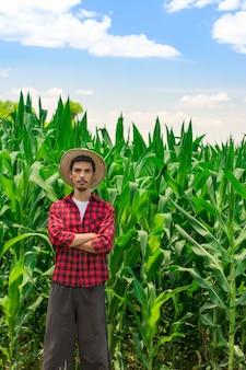 Agricultor con tableta digital en plantaciones de campo de maíz cultivado