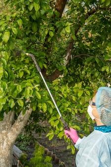 Un agricultor con traje de protección está rociando un manzano de enfermedades fúngicas o alimañas con un rociador a presión y productos químicos en el huerto de primavera.