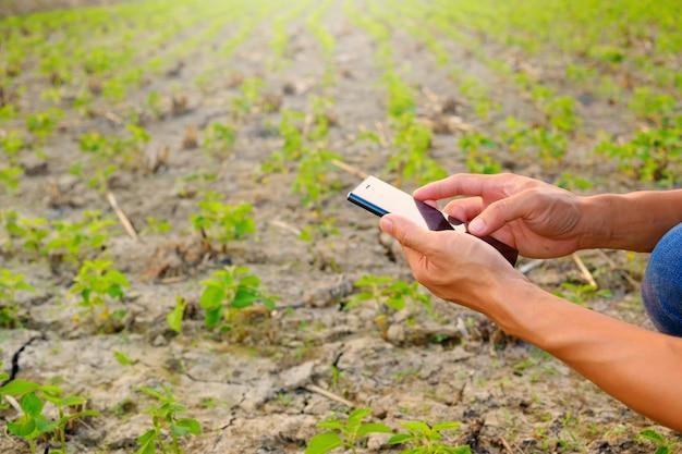 Agricultor utilizando informe de verificación móvil de soja en granja con espacio de copia