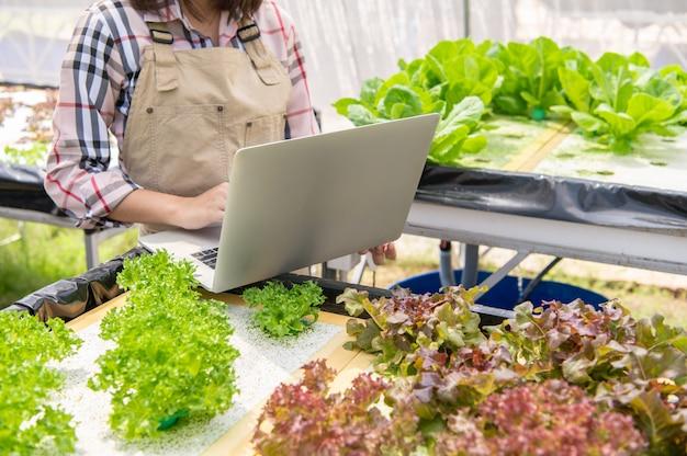 Agricultora hidropónica recolectando información sobre crecimiento vegetal y usando una computadora portátil