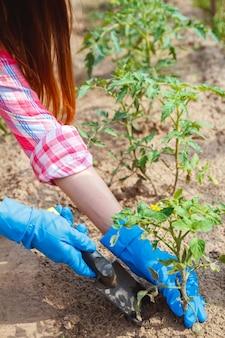 La agricultora se ocupa de las plantas de la plantación