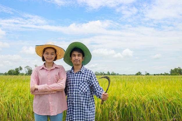 Agricultores asiáticos parejas hombres y mujeres de pie sonriendo felices llevando hoz en los campos de arroz dorado