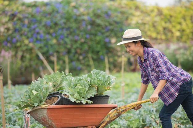 Los agricultores están trabajando en la granja de hortalizas. carro