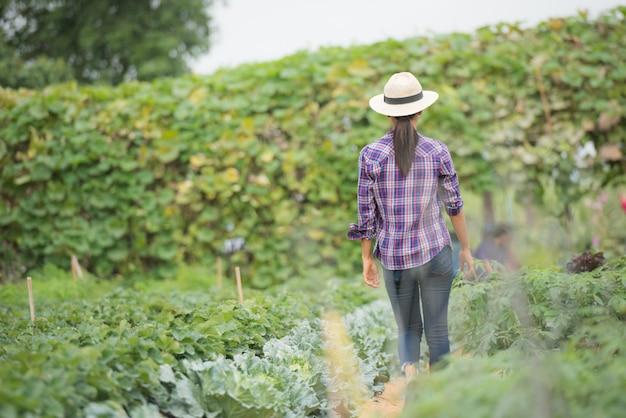 Los agricultores están trabajando en una granja de vegetales.