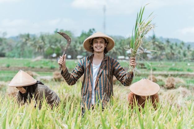 Agricultores felices con las manos levantadas llevando plantas de arroz y hoz mientras cosechan arroz juntos durante el día