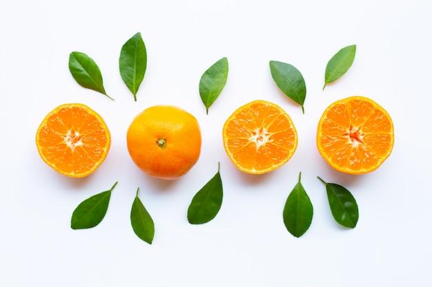 Agrios anaranjados frescos con las hojas del verde en blanco.