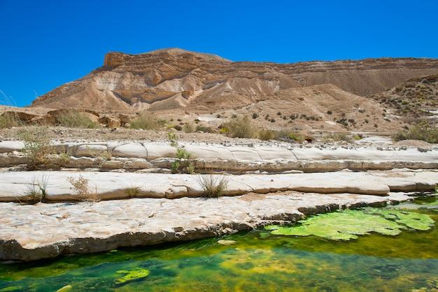 Agua en el desierto de negev, israel