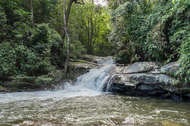 El agua que cae de la roca de la orilla del río en medio de la jungla