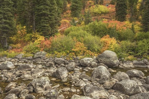 Agua que fluye en medio de las rocas con árboles de diferentes colores.