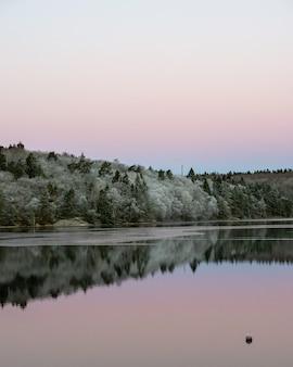 Agua tranquila y reflejos de árboles y cielo.