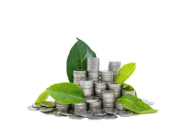 Ahorrar dinero para su inversión futura (hábito) es similar al crecimiento de hojas verdes en árboles