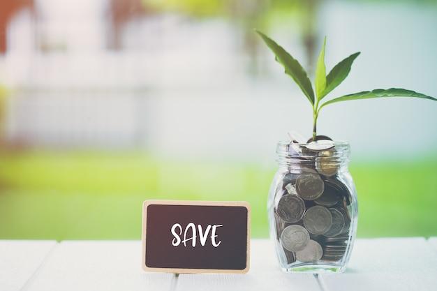 Ahorro de dinero, concepto financiero de inversión. planta que crece en monedas de ahorro con texto guardar