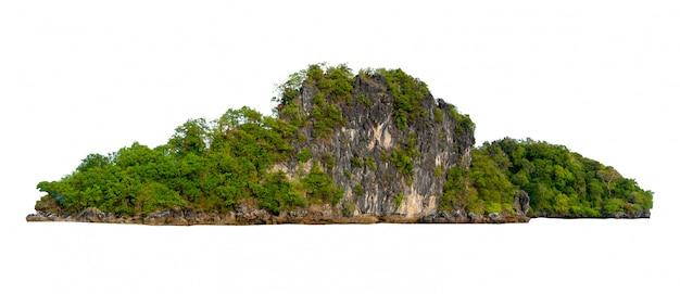 Aislar la isla en medio del mar verde, con un fondo blanco separado del fondo.