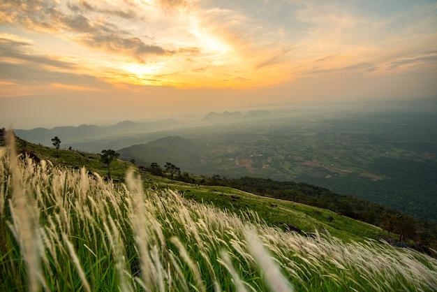 Ajardine el amanecer en la montaña con el campo y la hierba blanca de la hierba verde del prado y el cielo hermoso de la nube
