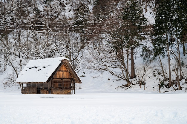 Ajardine la vista de shirakawa-go en japón en la estación del invierno.
