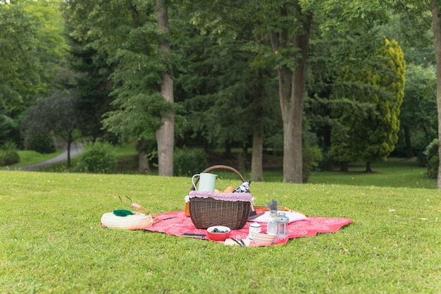 Ajuste de picnic en la manta sobre la hierba verde