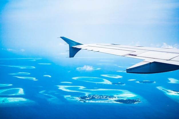 Ala del avión