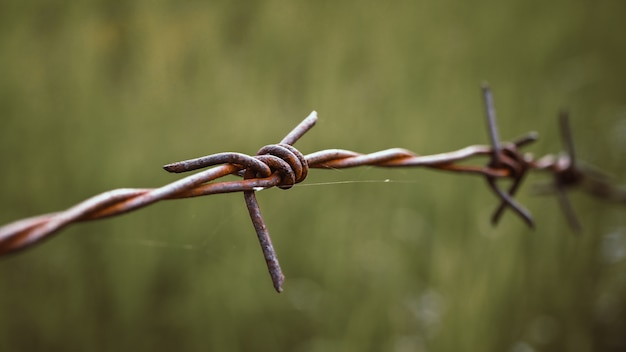 Alambre de espino. alambre de púas en la cerca para sentirse preocupante concepto