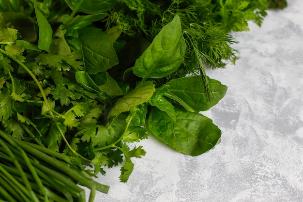 Albahaca verde fresca, cilantro, lechuga, albahaca morada, cilantro de montaña, eneldo, cebolla verde en cajas de plástico sobre hormigón gris