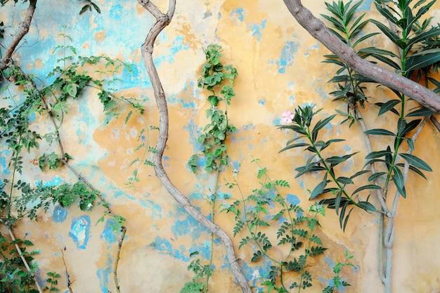 Aldea de anafiotika bajo la acrópolis, atenas, grecia