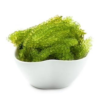 Algas marinas de las algas marinas, cierre encima del caviar verde aislado en el fondo blanco.