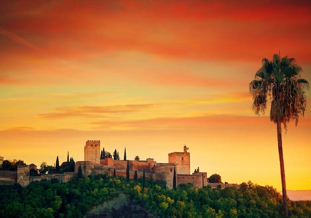 Alhambra al atardecer con palmera granada.