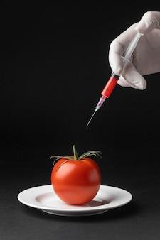 Alimentos de la ciencia de los transgénicos de tomate