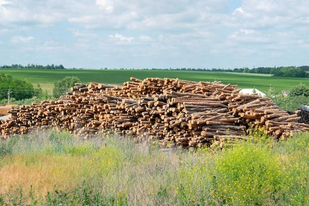 Almacenaje industrial al aire libre de troncos.