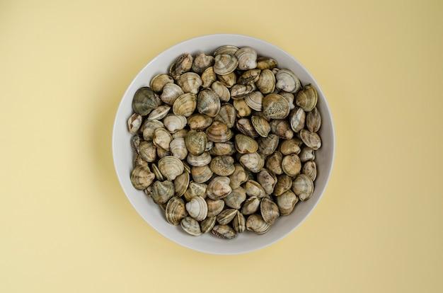 Almejas o moluscos en un tazón blanco. vista superior