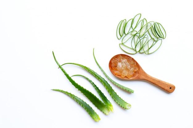 El aloe vera es una planta medicinal popular para la salud y la belleza, fondo blanco.