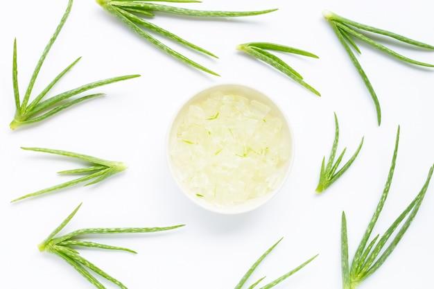 El aloe vera es una planta medicinal popular para la salud. vista superior
