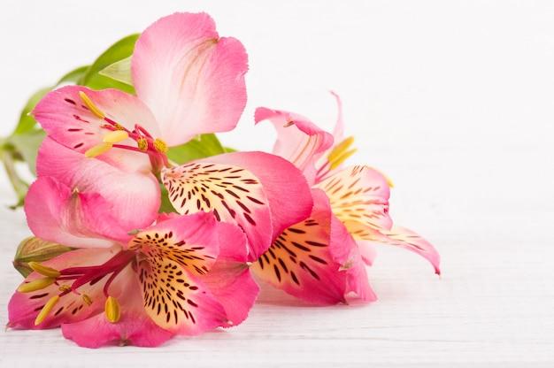 Alstromeria flores en madera