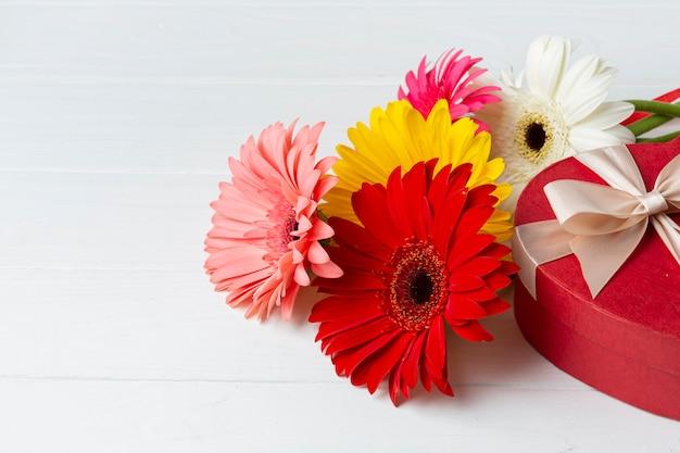 Alta vista de flores de gerbera y regalo de chocolate