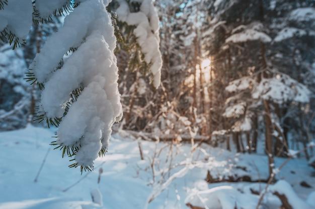 Altas montañas bajo la nieve en invierno
