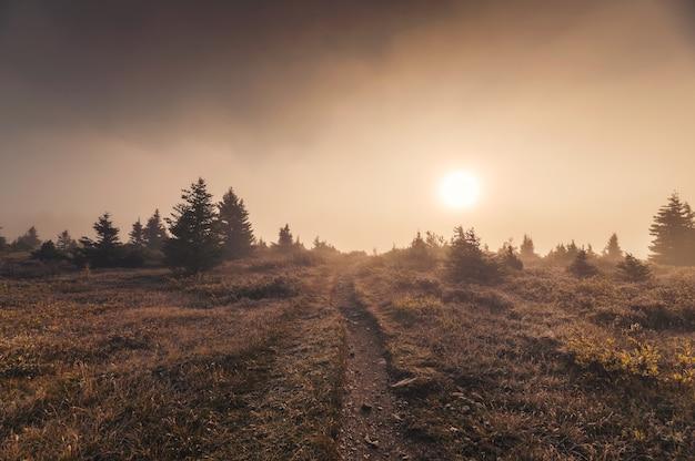 Amanecer en el campo de niebla dorada en otoño desierto en el parque nacional