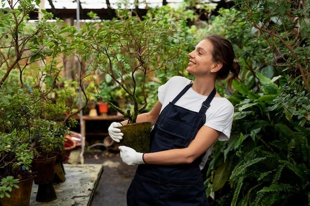Amante de la naturaleza trabajando en invernadero.